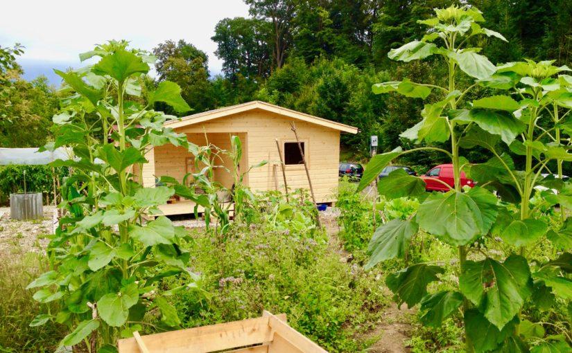 Das Gartenhaus steht